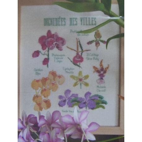 Orchidées des villes