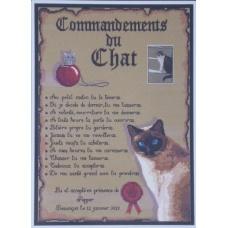 Les commandements du chat