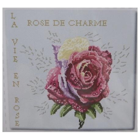 Rose de charme