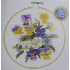 Violettes (kit)
