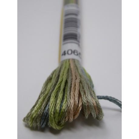 Fil DMC Mouliné Color Variation n° 4065