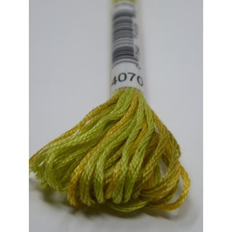 Fil DMC Mouliné Color Variation n° 4070