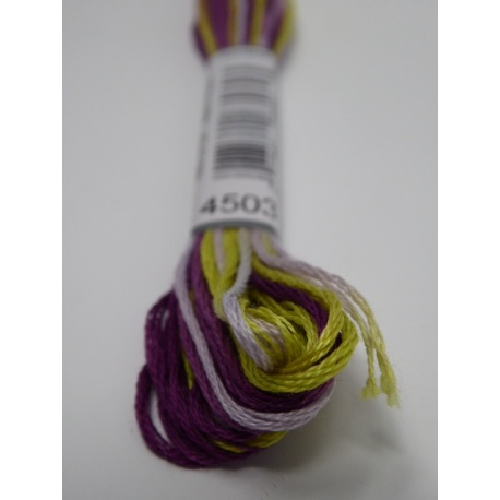 Fil DMC Coloris n° 4503 - Glycine